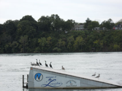 A water ski ramp in the Niagara River near Lewiston, NY.